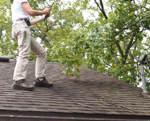 Jennifer Ohmes Roof Inspection