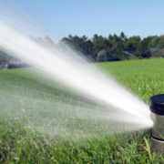 Irrigation or Sprinkler Maintenance Inspection