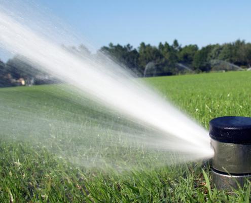 Irrigation or Sprinkler Maintenance Inspection